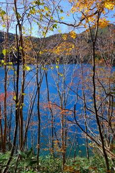 大沼池2 のコピー.jpg