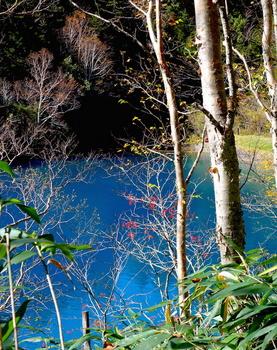 大沼池3 のコピー.jpg