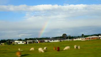 放牧地に虹 のコピー.jpg